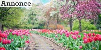 glæde af din have